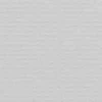 Light Grey 216 (1001)