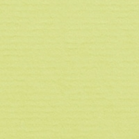 282 - Lime