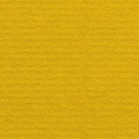 Kiwi 284 (1001)