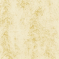 Cream 2 (Antiqua)