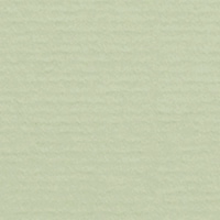 Limetree 334 (1001)