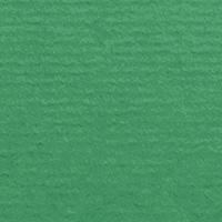 Firtree Green 339 (1001)