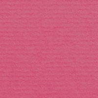 Fuchsia 486 (1001)