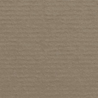 Taupe 586 (1001)
