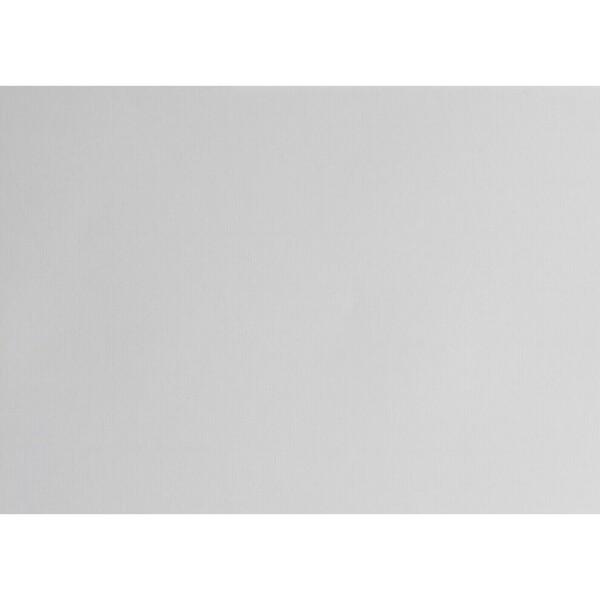 Artoz 1001 - 'Light Grey' Card. 490mm x 700mm 220gsm PN Card.
