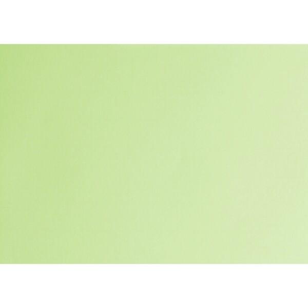 Artoz 1001 - 'Birchtree Green' Card. 490mm x 700mm 220gsm PN Card.