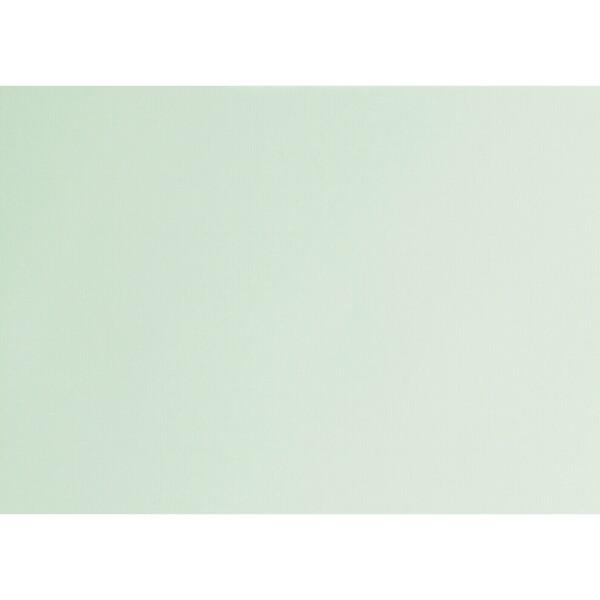 Artoz 1001 - 'Pale Mint' Card. 490mm x 700mm 220gsm PN Card.