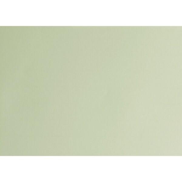 Artoz 1001 - 'Limetree' Card. 490mm x 700mm 220gsm PN Card.