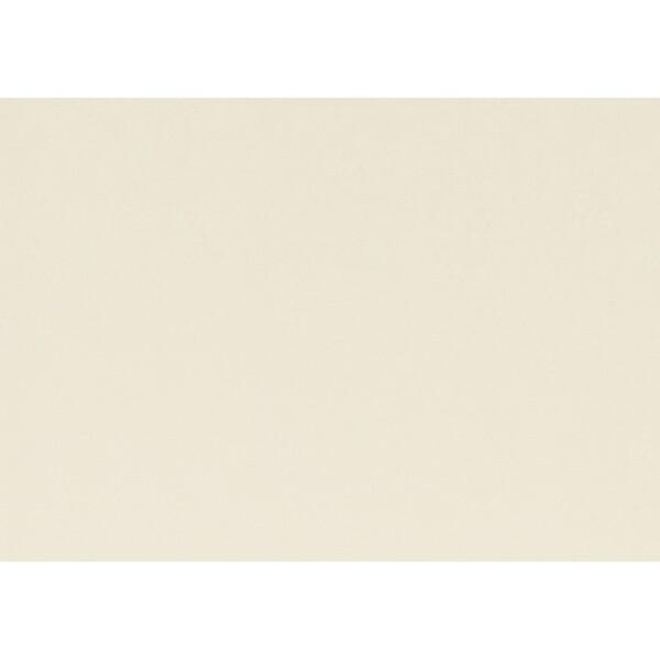 Artoz 1001 - 'Chamois' Paper. 450mm x 640mm 100gsm PN Paper.