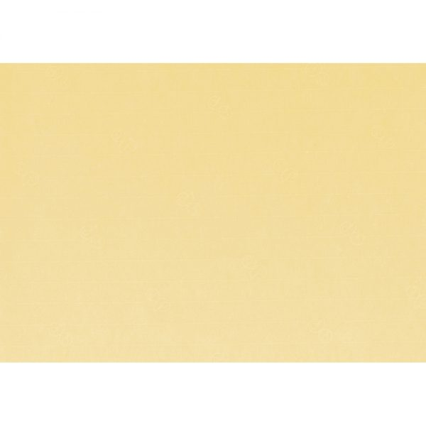 Artoz 1001 - 'Light Yellow' Paper. 450mm x 640mm 100gsm PN Paper.