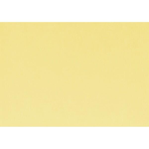 Artoz 1001 - 'Citro' Paper. 450mm x 640mm 100gsm PN Paper.