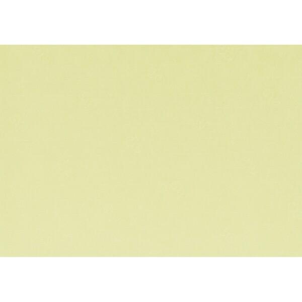 Artoz 1001 - 'Lime' Paper. 450mm x 640mm 100gsm PN Paper.