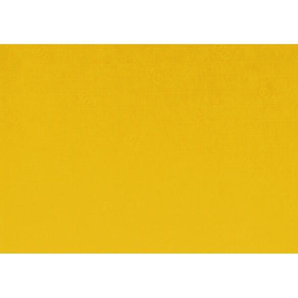 Artoz 1001 - 'Kiwi' Paper. 450mm x 640mm 100gsm PN Paper.