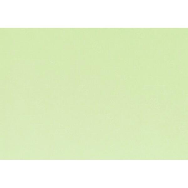 Artoz 1001 - 'Birchtree Green' Paper. 450mm x 640mm 100gsm PN Paper.