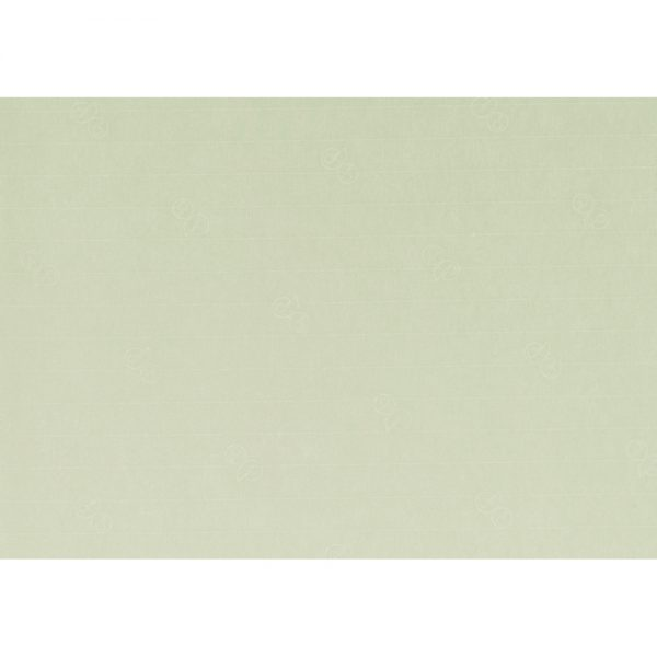 Artoz 1001 - 'Limetree' Paper. 450mm x 640mm 100gsm PN Paper.