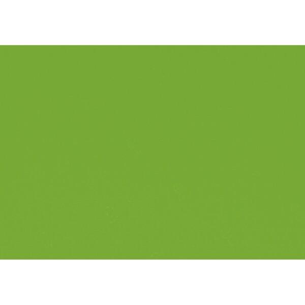 Artoz 1001 - 'Pea Green' Paper. 450mm x 640mm 100gsm PN Paper.