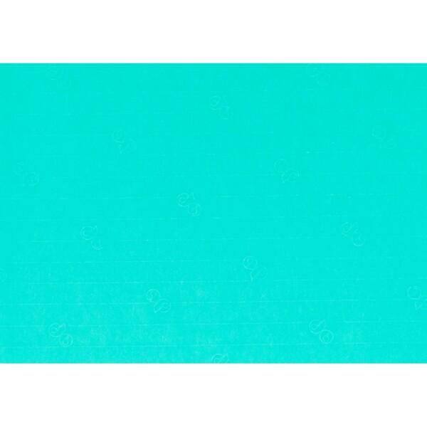 Artoz 1001 - 'Emerald Green' Paper. 450mm x 640mm 100gsm PN Paper.