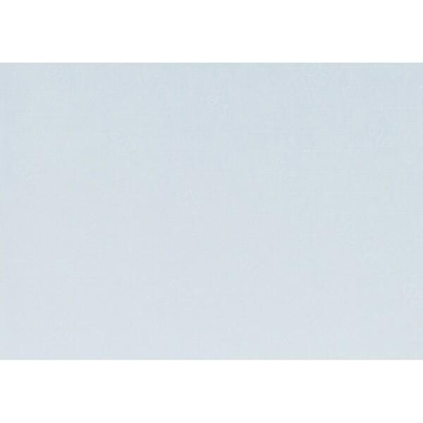 Artoz 1001 - 'Aqua' Paper. 450mm x 640mm 100gsm PN Paper.