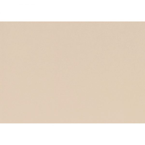 Artoz 1001 - 'Apricot' Paper. 450mm x 640mm 100gsm PN Paper.