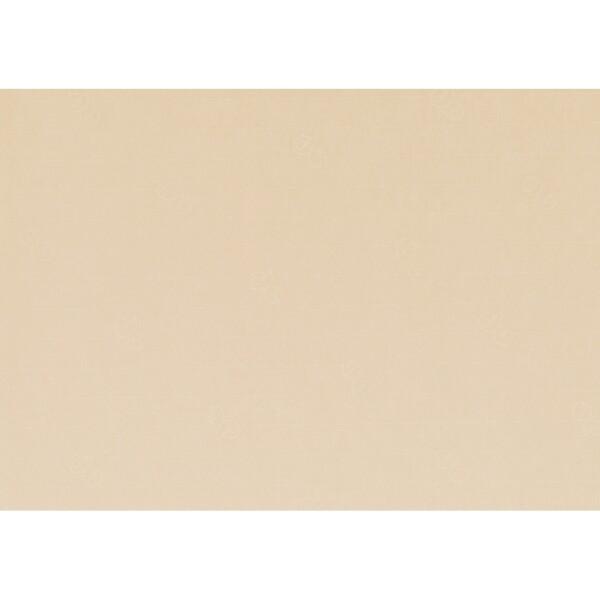 Artoz 1001 - 'Baileys' Paper. 450mm x 640mm 100gsm PN Paper.