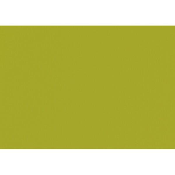 Artoz 1001 - 'Bamboo' Card. 420mm x 297mm 220gsm A3 Card.