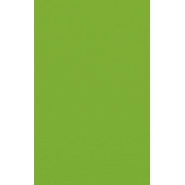 Artoz 1001 - 'Pea Green' Card. 135mm x 85mm 220gsm B7 Card.