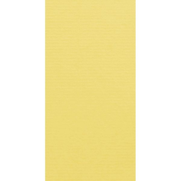 Artoz 1001 - 'Citro' Card. 210mm x 105mm 220gsm DL Card.