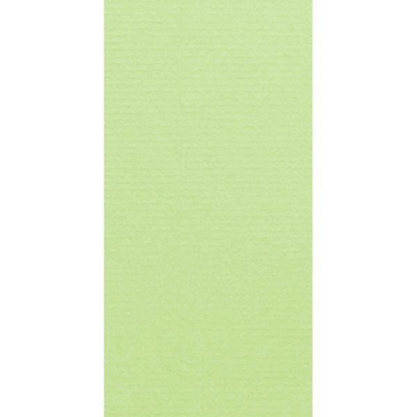 Artoz 1001 - 'Birchtree Green' Card. 210mm x 105mm 220gsm DL Card.