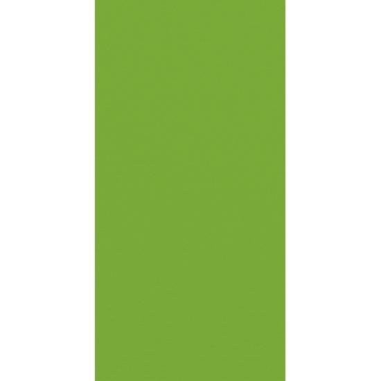 Artoz 1001 - 'Pea Green' Card. 210mm x 105mm 220gsm DL Card.