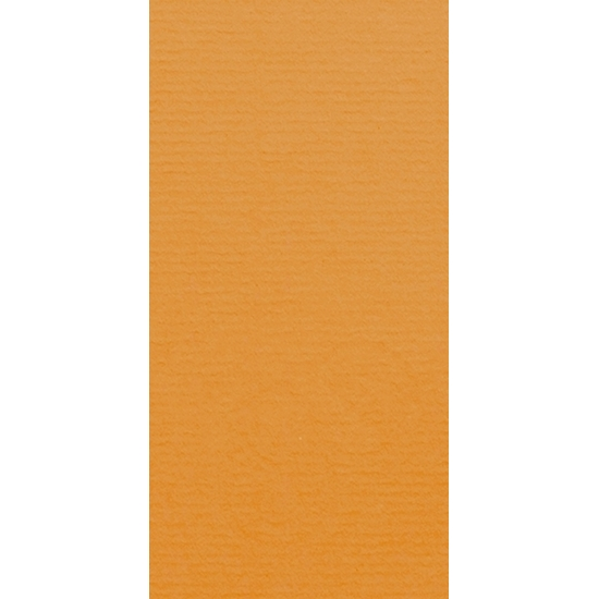 Artoz 1001 - 'Malt' Card. 210mm x 105mm 220gsm DL Card.