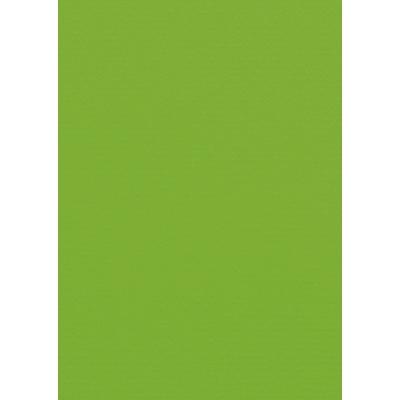 Artoz 1001 - 'Pea Green' Card. 148mm x 105mm 220gsm A6 Card.