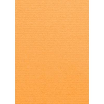 Artoz 1001 - 'Mango' Card. 148mm x 105mm 220gsm A6 Card.