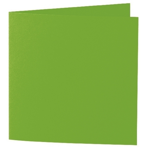 Artoz 1001 - 'Pea Green' Card. 310mm x 155mm 220gsm Square Folded Card.