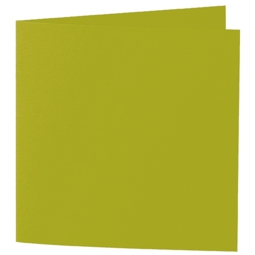 Artoz 1001 - 'Bamboo' Card. 332mm x 166mm 220gsm Large Square Folded Card.