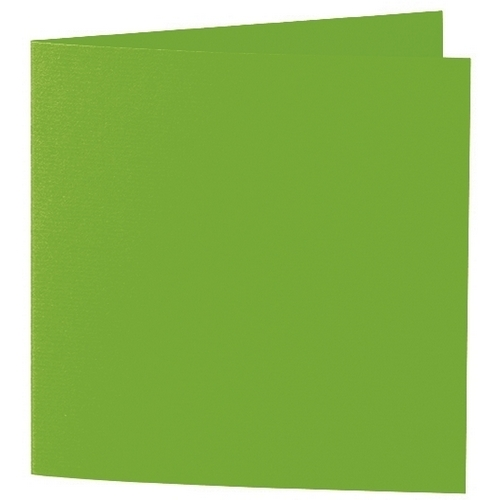Artoz 1001 - 'Pea Green' Card. 332mm x 166mm 220gsm Large Square Folded Card.
