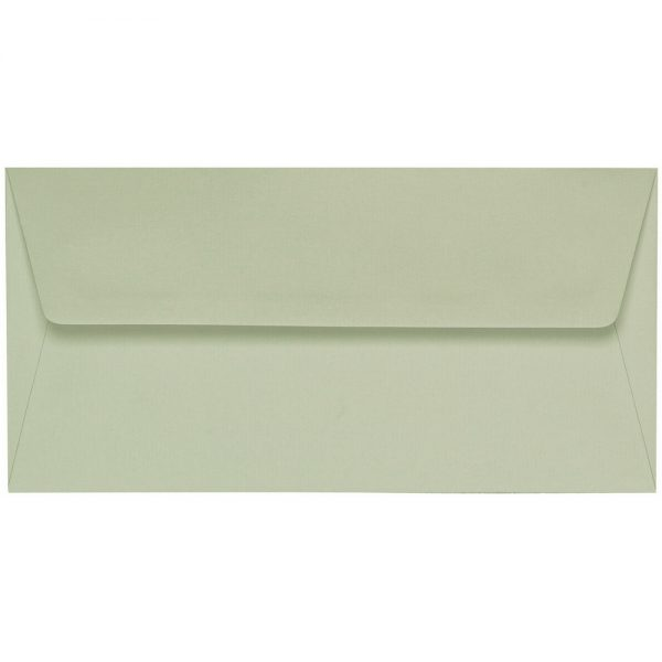 Artoz 1001 - 'Limetree' Envelope. 216mm x 80mm 100gsm Letterbox Peel/Seal Envelope.