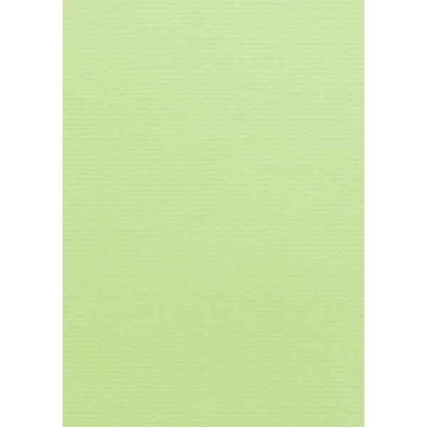Artoz 1001 - 'Birchtree Green' Card. 210mm x 297mm 220gsm A4 Card.
