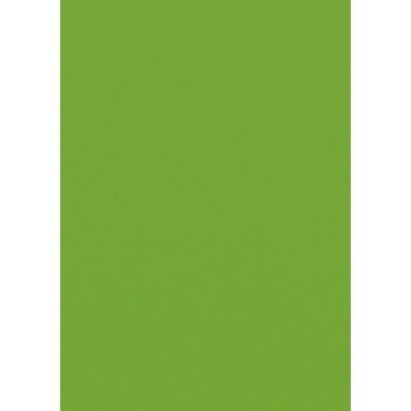 Artoz 1001 - 'Pea Green' Card. 210mm x 297mm 220gsm A4 Card.